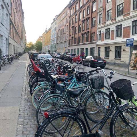 универсальные велосипеды для разных дорог